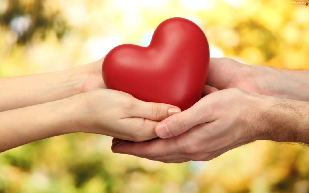The Art of Giving Touch with True Generosity
